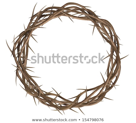 view of branches of thorns woven into a crown stock photo © razvanphotos
