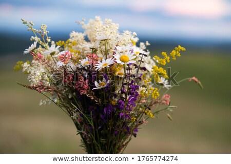 Romântico menina flores silvestres retrato belo Foto stock © Anna_Om