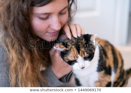 Cat scratching - Showing Room Stock photo © icemanj