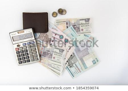 Diferente billetes monedas egipcio dinero libra Foto stock © CaptureLight