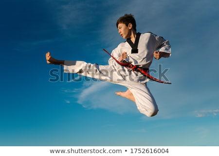 Man athlete practicing taekwondo  Stock photo © bluering