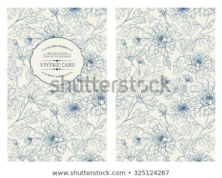 Elegante bloempatroon witte textuur achtergrond weefsel Stockfoto © SArts