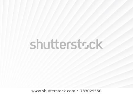 элегантный вектора минимальный серебро белый аннотация Сток-фото © SArts