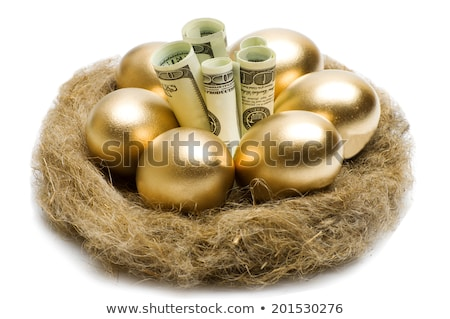 Stock photo: golden egg and dollars