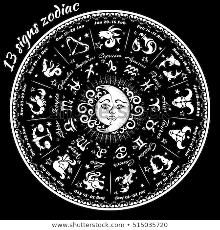 13 signs zodiac  Stock photo © Olena