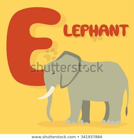 Vector cartoon elephant large mammal forest elephant  asian elephant african bush with large ears il Stock photo © NikoDzhi