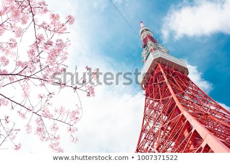 Tokyo kule Japonya mavi gökyüzü şehir inşaat Stok fotoğraf © daboost