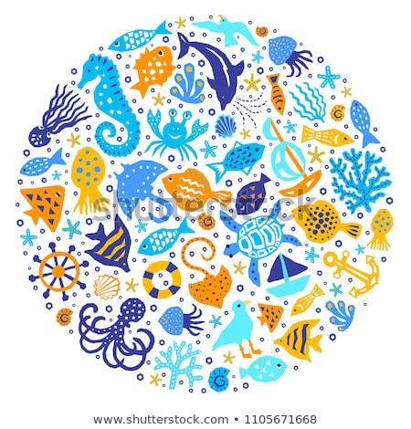 Electric stingray, starfish and fish underwater world Stock photo © orensila