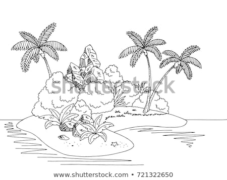 Outlined Cartoon Island With Palm Tree and rock Stock photo © Natali_Brill