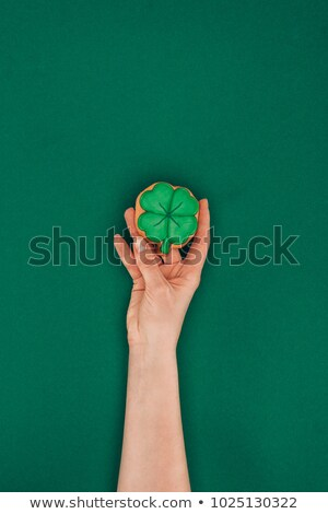 cropped image of woman holding cookie in shape of shamrock isolated on green st patricks day concep stock photo © lightfieldstudios