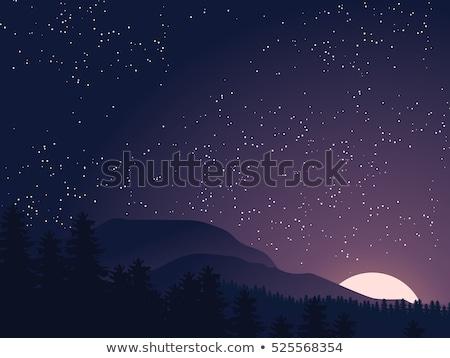 Bleu ciel de la nuit star vecteur résumé illustration Photo stock © orensila