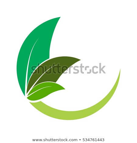 Green Crescent Shape Letter E Vector Illustration Stock photo © cidepix