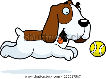 Cartoon Basset Hound Chasing Ball Stock photo © cthoman
