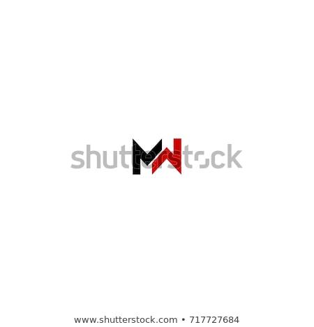Logo vector icon ontwerp Stockfoto © blaskorizov