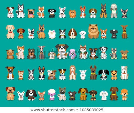 funny bulldog dog cartoon character Stock photo © izakowski