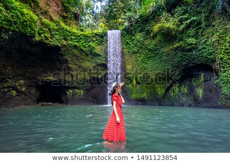 Waterval bali Indonesië boom bos Stockfoto © boggy