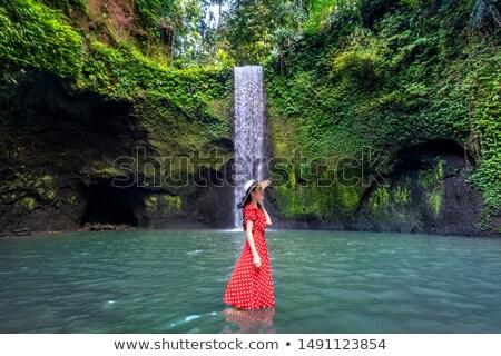 Vízesés Bali Indonézia kilátás fa erdő Stock fotó © boggy