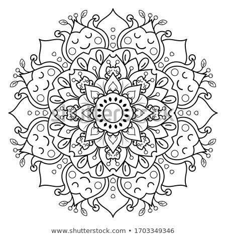 Sevimli vektör çiçek mandala Stok fotoğraf © Pravokrugulnik