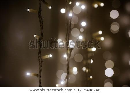 Lichter Girlande farbenreich Glühbirnen bokeh Hintergrund Stock foto © galitskaya