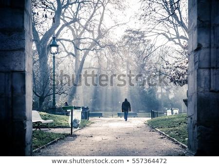 Hombre caminando invierno parque solo ciudad Foto stock © robuart