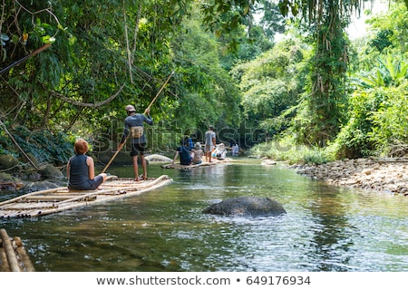 Bamboe vlot tropische water natuur bomen Stockfoto © curaphotography