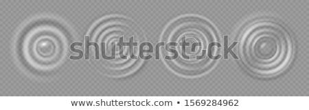 Ripple powierzchnia wody tekstury spadek zestaw wektora Zdjęcia stock © pikepicture