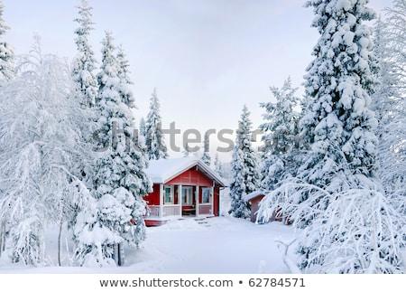 Paese casa inverno sera cielo costruzione Foto d'archivio © Paha_L