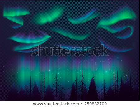 Aurora Borealis on Vector Illustration   Christmas Tree On Aurora Borealis Background