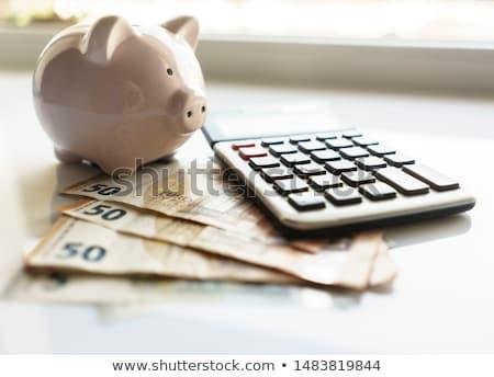 Saving Euros Photo stock © Supertrooper