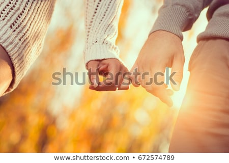 Couple on an autumn stroll Stock photo © photography33