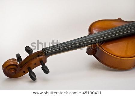 Violin bacground Stock photo © IstONE_hun