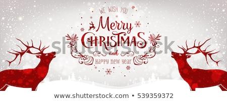 christmas deer card with text merry christmas stock photo © elmiko