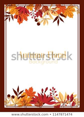 Herfstkleuren boom bos landschap bergen najaar Stockfoto © HdcPhoto