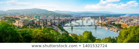 Budapest view stock photo © samsem