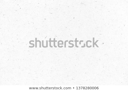 Black and White Grainy Background Stock photo © THP