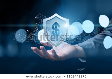 Financial Defence Protection Stock photo © Lightsource