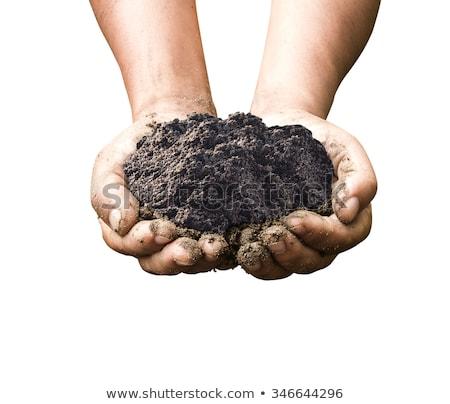 почвы рук изолированный белый работу земле Сток-фото © sqback