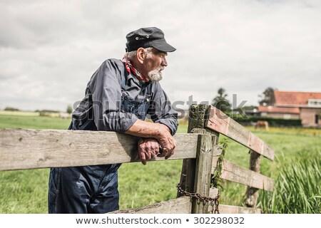 Fa kerítés gazdák mező sín nyújtás Stock fotó © rhamm