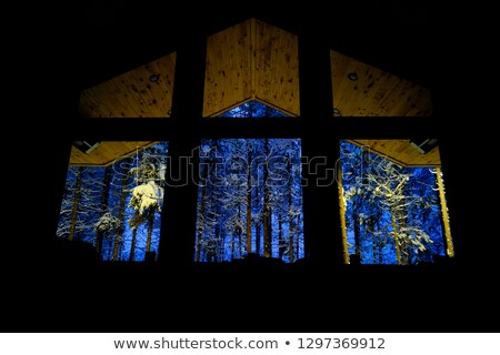 snow night large window Stock photo © romvo