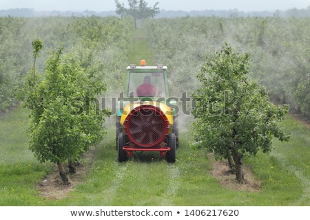 Agriculture, spraying of trees Stock photo © simazoran