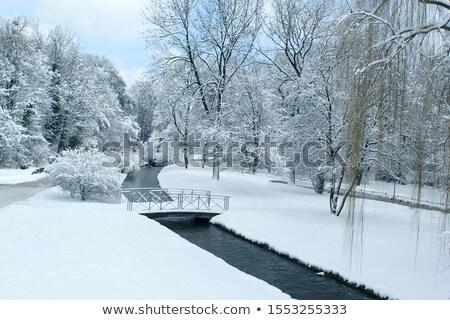 凍結 小川 冬 堆石 丘 公園 ストックフォト © wildnerdpix