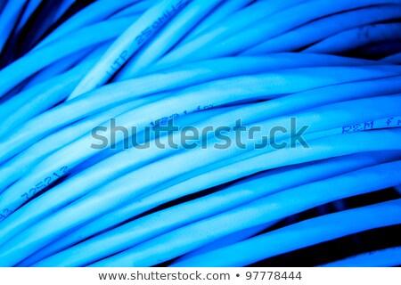 LAN · кабелей · переключатель · сеть · бизнеса · свет - Сток-фото © oleksandro