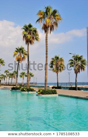 Tropical Boardwalk Stock photo © emattil