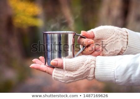 手袋 ペア 黒 白 ファッション 美 ストックフォト © nito