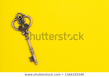 Bronze key Stock photo © vtls