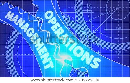 Operations Management on the Gears. Blueprint Style. Stock photo © tashatuvango