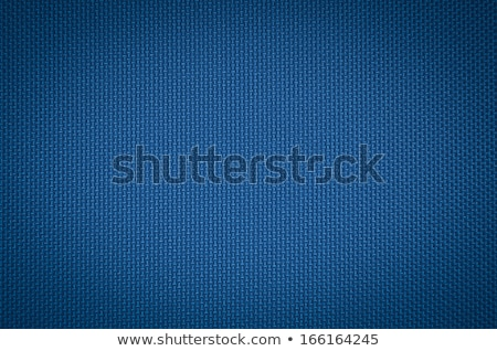 Blue nylon texture Stock photo © ozaiachin