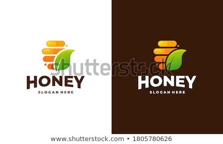 Pomarańczowy sześciokąt godło logo web design streszczenie Zdjęcia stock © saicle