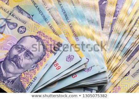 詳細 ルーマニア お金 ヨーロッパ 金融 経済 ストックフォト © CaptureLight