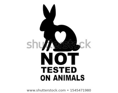 Niet dieren symbolen konijn muizen silhouet Stockfoto © sahua